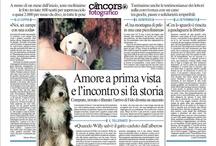 2 Edizione Cancorso Fotografico - 2012 / Ecco a voi qualche foto della scorsa edizione del Cancorso Fotografico!