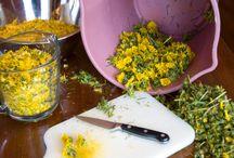 Herbal remedies & Essential oils