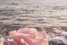 방탄손연단 (BTS) wallpaper