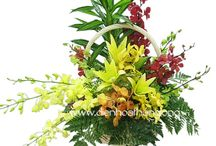 Flowers for International Women's day in Saigon / Send flowers to Saigon - Ho Chi Minh City on International Women's day - March 8th