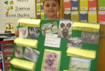 Non-fiction Poster Projects