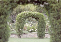 Secret Garden Wedding Inspiration / by Andrea Freeman Events