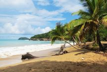 Guadeloupe beaches / Discover all our beautiful beaches in Guadeloupe islands