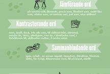 language / swedish and english