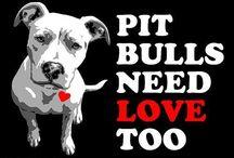 PITT BULL LOVE / by Rose Mamajek Switalski