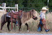 Mini Cowboy Stampede