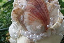 For the love of Shells / Sea shells
