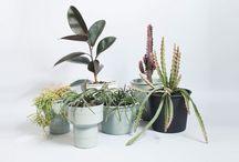 LANDSCAPE DESIGNERS   The Planthunter Directory / Landscape designers we adore!