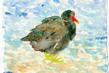 Bird paintings by Yumi Kudo / My bird paintings