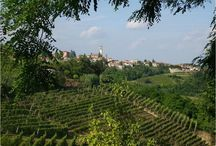 Hills of Monferrato / There is a part of North-West Italy, PIEDMONT, that is still not so well known and is the territory that spreads out between the MONFERRATO and the LANGHE!  Foreign and Italians tourists are so surprised and thrilled when visit this territory The hills of Monferrato and Langhe is very very beautifull.!! Welcome!