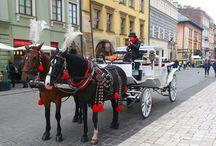 Viaje a Cracovia