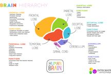 useful classroom info