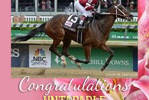 2014 Kentucky Oaks / by The Blood-Horse