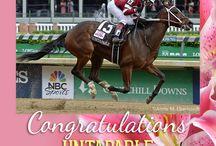 2014 Kentucky Oaks / by The Blood-Horse