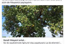 www.kendihikayeniyarat.com / sadece sana ait bir seyahat hikayesi yaratma vakti..