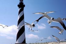 Lighthouses / by Ludell Goodman