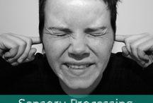 Sensory Processing: Auditory