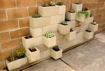 Coupe de plante extérieure