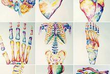 Arte medico