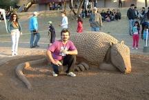 Amigos de la Bienal del Chaco