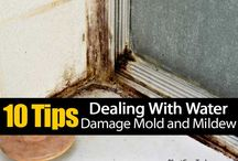 Water Damage Articles