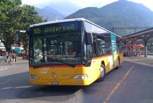 buses / bus