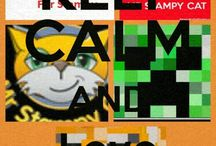 Stampylongnose / Mr stampy cat