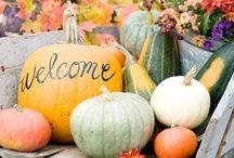 Fall Favorites / by Lori Vidaurri