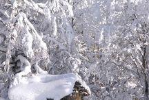 Poland snow my favorite