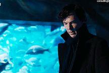 Sherlock Holmes+Benedict Cumberbatch