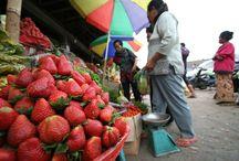 市場-Local Market-