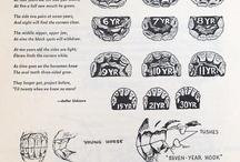Horse teeth / Horse teeth, tooth age etc.