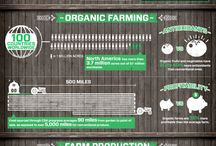FARM-FARMA