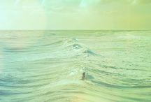 Playa y vida