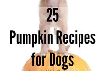 Recipes for dog treats