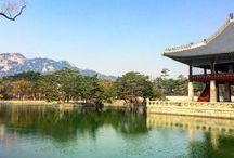 Amazing Travel Destinations in Asia