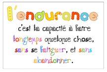 5au Quo.