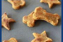 Home made Cat & Dog food recipes