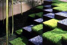 Gardens and patios / by Frank Coronado