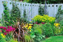 сад  и огород красиво