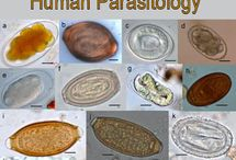 Parasitology Atlas