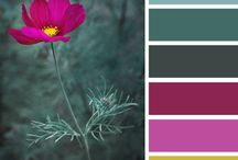 inspiration colors