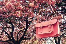 Everything I like! ♥
