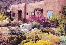 Desert Homes / Desert Homes Design Ideas