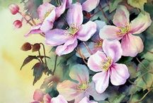 clematis paintings