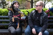 Volunteers / As an all volunteer organization, City Dogs Rescue is grateful for our wonderful volunteers.