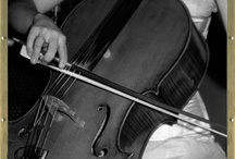 Cello, Cella, Celli / by Allison Wonderland