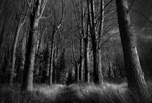 Spooky Places / Spooky, creepy places