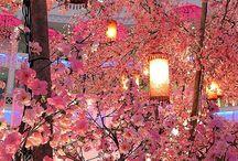 Spring Wedding / Spring Wedding Ideas and Invitations.