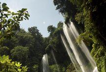 Bali Waterfall / Bali Waterfall - waterfalls around Bali
